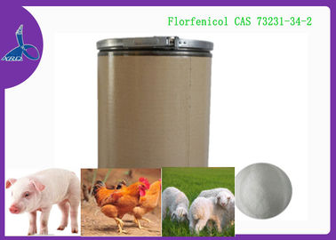China USP 98% Florfenicol Water Soluble Bulk CAS 73231-34-2 for Veterinary Antibiotics factory